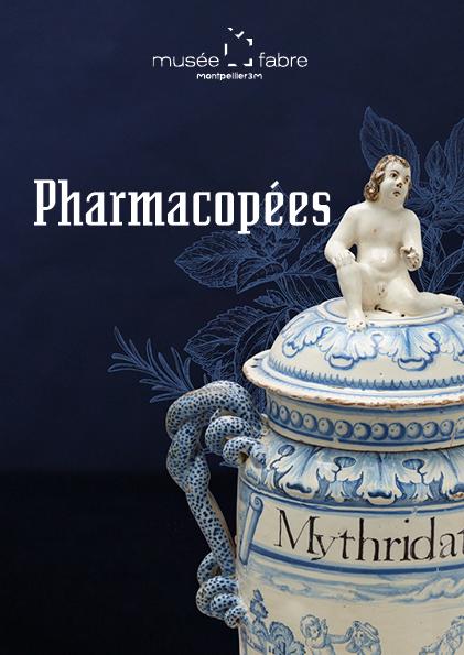 """Montpellier, visite de l'exposition """"Pharmacopées"""", sera replanifiée selon le contexte sanitaire"""